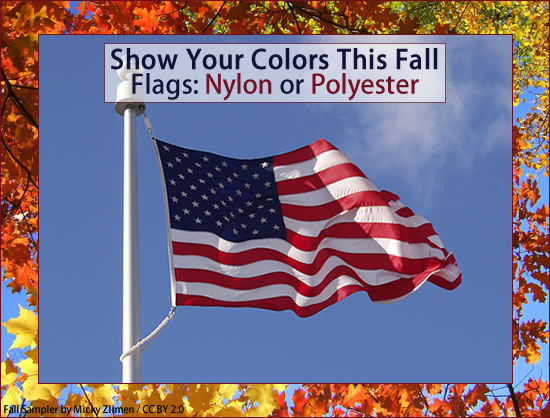 Show Your Colors This Fall